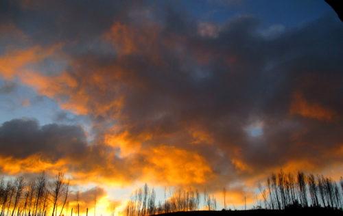 Morgenrot, nicht heute - vorein paar Tagen, Goladinha