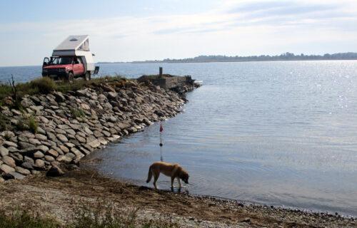 Estland 3 - Insel hopping, Goladinha