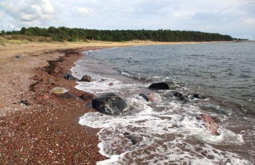 Estland 6 - Insel Hiiumaa, Stellplatz, Strand, Goladinha