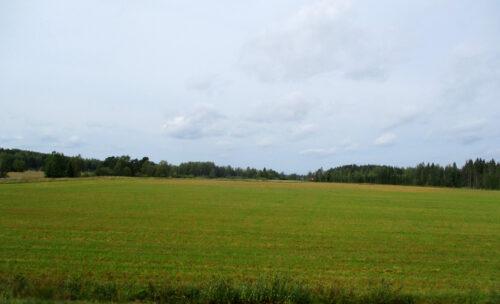 Finnland 2 - Landschaft, Goladinha