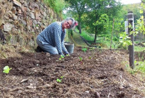 Muttertag, Pflanztag, Garten, Horta, Gemüseanbau, Goladinha