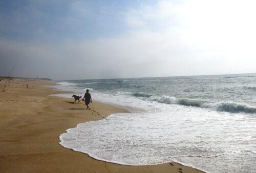 Ozean, Ausflug, Osso da Balaya, Sao Pedro de Moel, Muel, Agua de Madeiros, Nazare, Goladinha