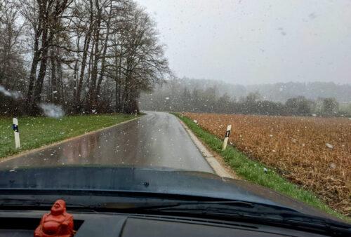 de, Deutschland, Schneetreiben im April, Otting, Knaubenhof, Goladinha