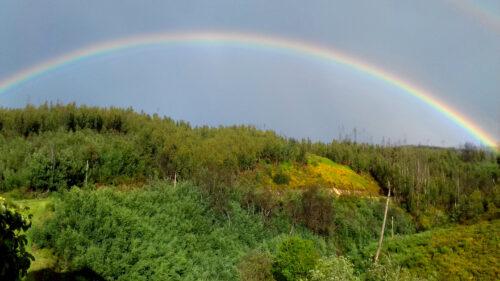 Regenbogen doppelt, Goladinha